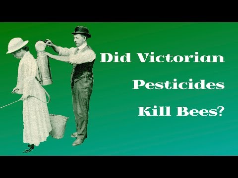 Did Victorian Pesticides Kill Bees?