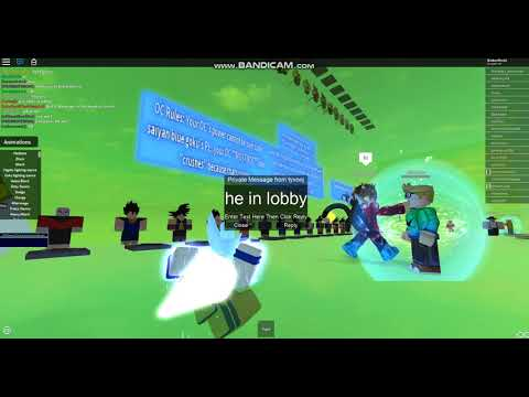 Roblox Hacker on DB RP
