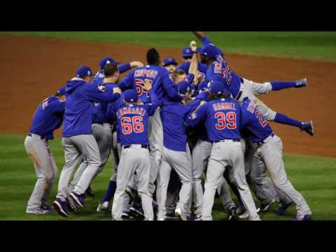 Go Cubs Go! World Series victory thrilled