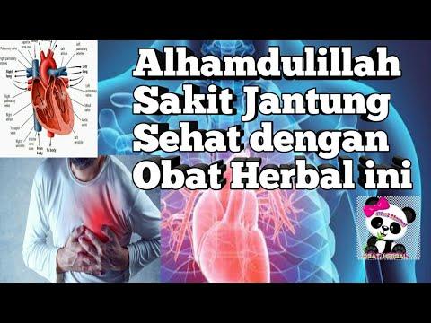obat-herbal-buat-penyakit-jantung