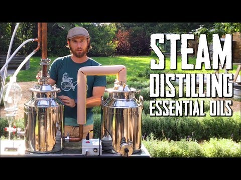 How To Steam Distill Essential Oils