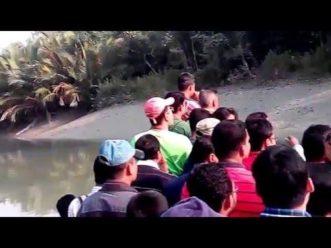 Sundarban Documentary,Bangladesh