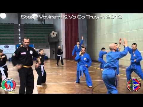 Stage Vovinam & Vo Co Truyen Italy