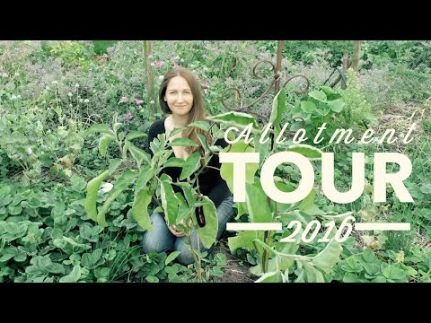 Welcome to my Allotments: TOUR 2016 on How to Grow a Garden with Scarlett