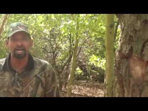 Dhul Gariir Xuseen Shire Jaamac 2012 Hiiraan Net - YouTube