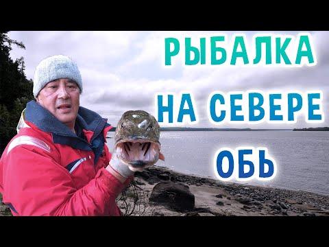 Рыбалка на севере. Обь.