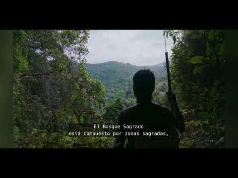 LAS ISLAS DE LA FE   Documental   Cautivador   Estreno Netflix