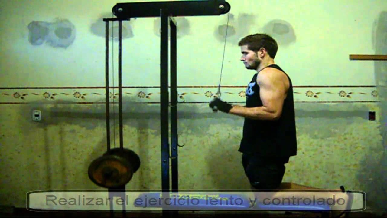 Ejercicios para triceps con polea alta gimnasio casero - Material de gimnasio para casa ...