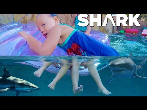 SHARK ATTACK POOL PRANK! 🦈