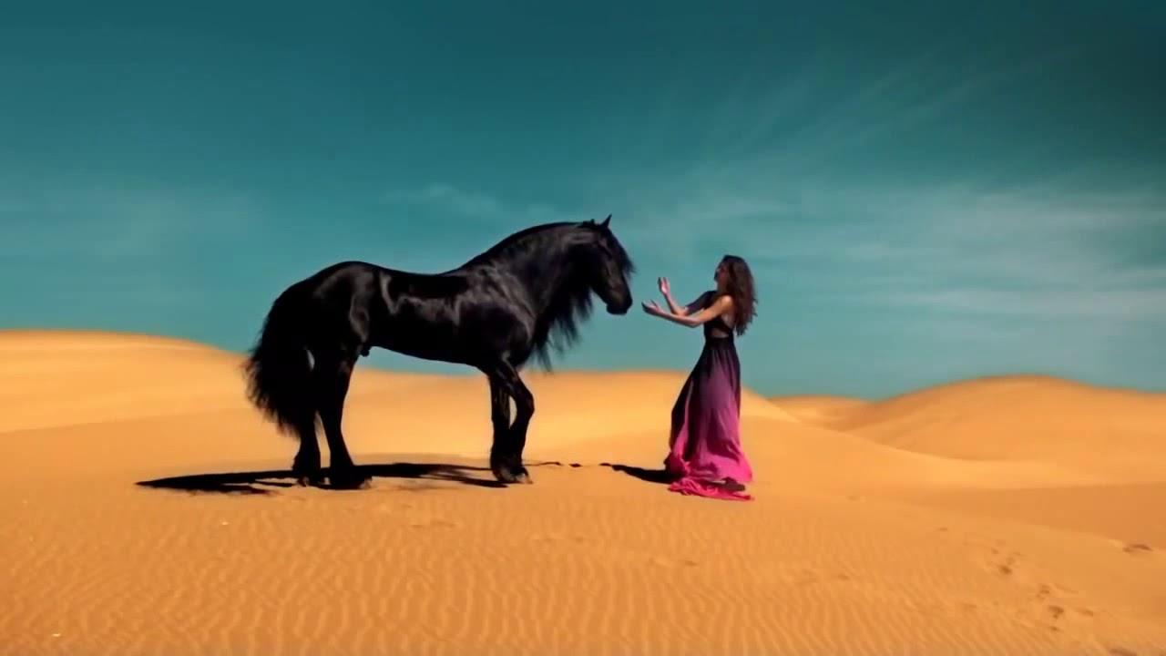 ☸ ANDRE RIEU ☸ Ƹ̵̡Ӝ̵̨̄Ʒ ☸ BOLERO   with DREAM HORSES ☸