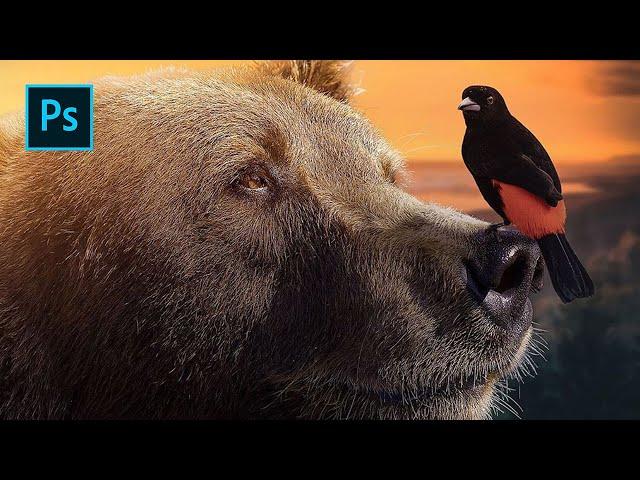 Photoshop Tutorial - The Bear & Bird
