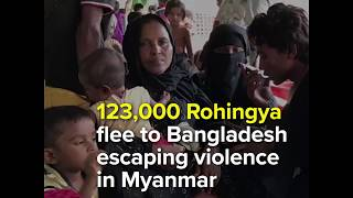 123,000 Rohingya flee to Bangladesh escaping violence in Myanmar