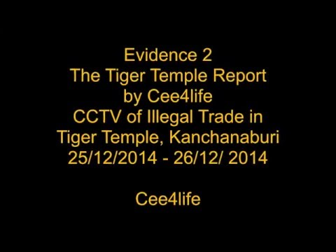 Tiger Temple - CCTV Evidence 2 Illegal Wildlife Trade 25th & 26th Dec 2014
