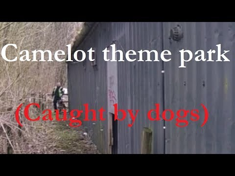 Camelot theme park (caught by dogs)
