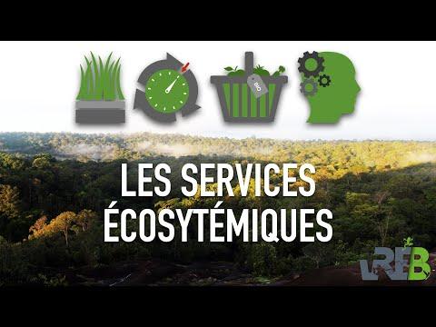 Services Écosystémiques (ou écologiques)