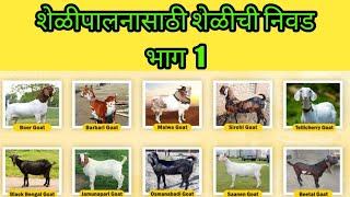 शेळीपालनासाठी शेळीची निवड भाग - 1 :: Selection of Goat for Goat Farming Part - 1