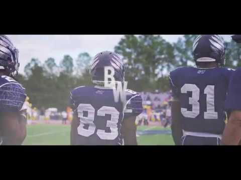 The 2017 Blue White Experience At Saint Augustine S University