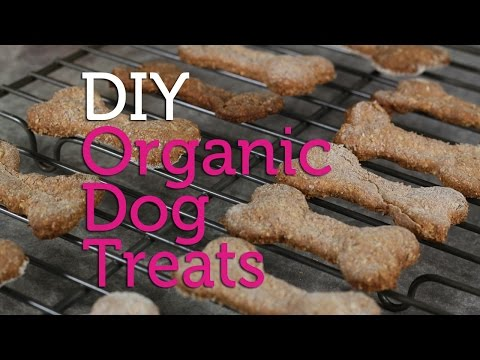 diy-organic-dog-treats- -easy-recipe