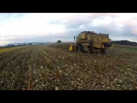 Žetev Koruze/ Harvesting Maize 2015
