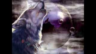 Medicine Wolf - Shamanic Music, Native American Music