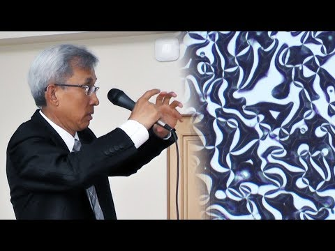 Professor Cheong on Domain Vortices. A Talk in Moscow