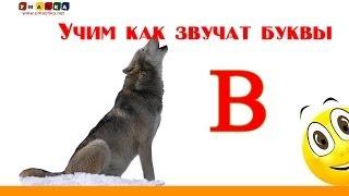 Алфавит русский Учим Буквы и Звуки с Кругляшиком - Буква В