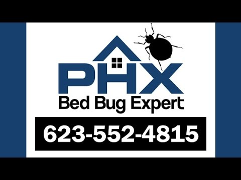 Gilbert Bed Bug Treatment  | Bed Bug Exterminator