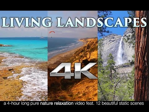 Living Landscapes in 4K | 4HRS of Pure Nature Relaxation™ Sc