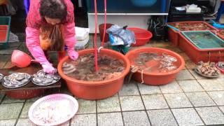 Jagalchi Fish Market, Busan, Korea