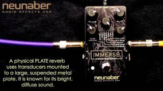 Neunaber Immerse Reverberator thumbnail