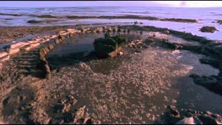 Time Team Digs   01   The Bronze Age (2002)