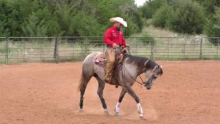 Benefits of Loping 'Longer'  S08E13 of Ridin' Horses with Kerry Kuhn