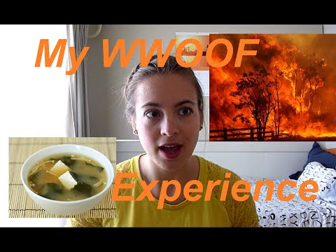 MAKING MISO & ALMOST DYING || My WWOOF Experience