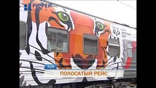 Поезд с тиграми и леопардами сделал остановку в Перми