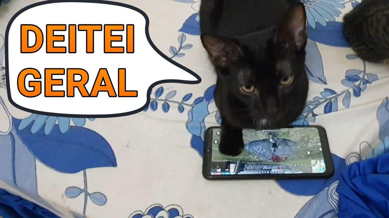 """Gato no FREE FIRE 😰🤦♂️ """"Júnior Matador"""" 😱 - Júlio e Eu"""