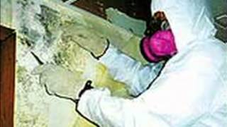 Metro Contract Management Asbestos Removal in Hamilton, ON - Goldbook.ca
