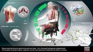 Рабочее кресло BIOSWING® с ортопедической системой - ваш персональный тренер