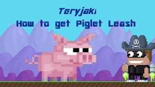 Growtopia - How to get piglet leash