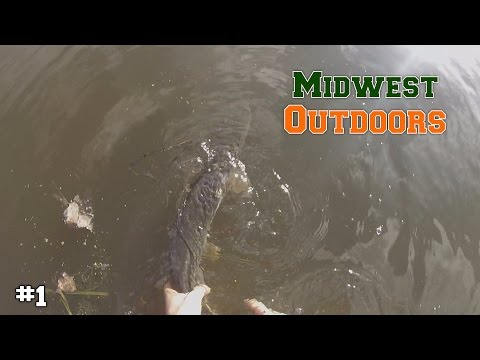 Fishing in the Back Waters of the Mississippi - (Pike and Big Bass)