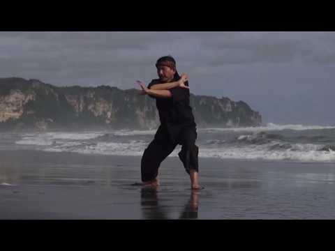 Traditions Of Pencak Silat