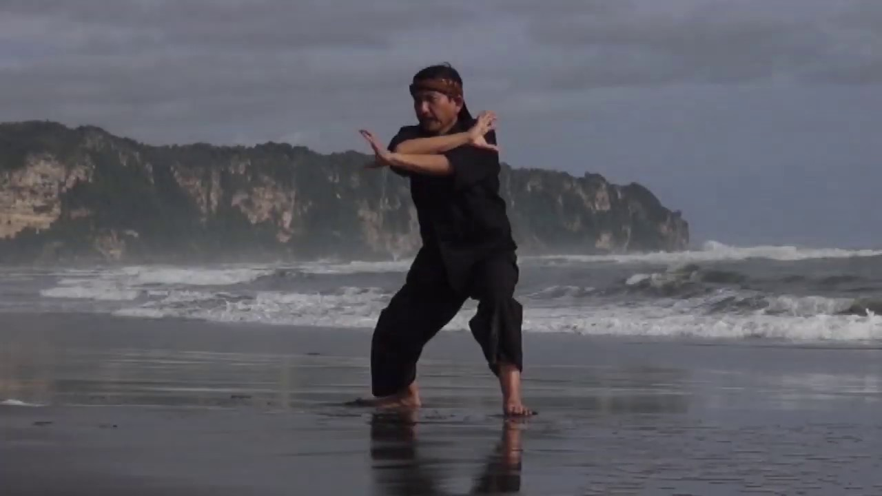 Download Traditions of Pencak Silat