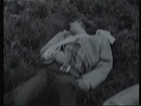 Axiom (Brian Cadd) - Arkansas Grass - Original Promo Clip 1969
