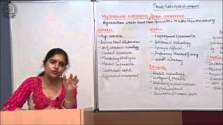 Features, Merits and Demerits of Multinational Corporations Cl XI Bussiness Studies by Ruby Singh