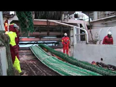 Superba Krill Oil From Aker Biomarine