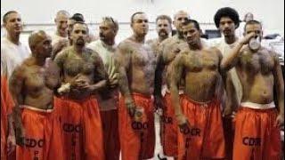 L'ENFER DES PRISONS ANGLAISES - REPORTAGE CHOC