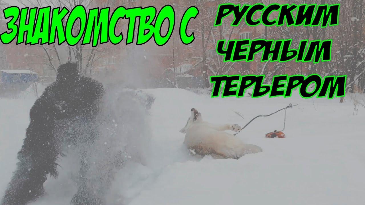 знакомство с русским севером