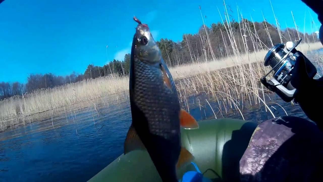 отдых и рыбалка на чудском