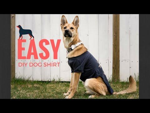 DIY DOG SHIRT!