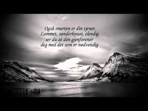 andre bjerke amor fati