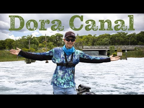 Dora Canal Is Back